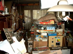Common Tiny House Questions - Hoarder