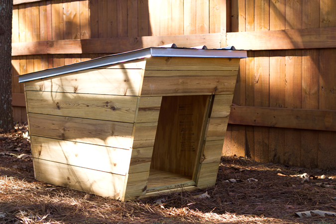 ModernDog Dog House - Tiny Home Builders